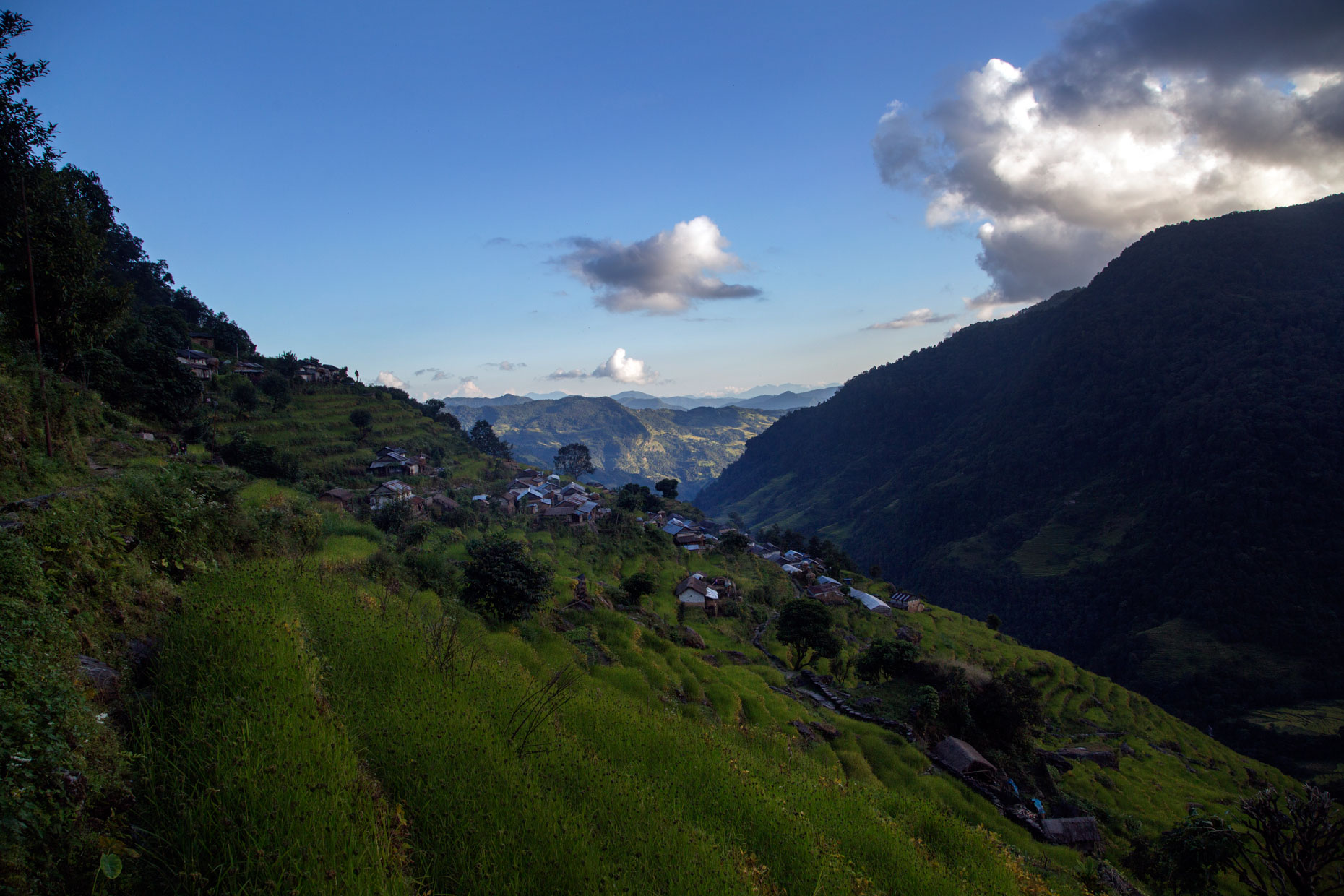 NEPAL_HONEY_LUFTHANSA_2014_10_16_30898